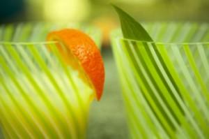 orangeglasses