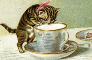 kitten-sipping-tea
